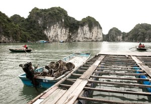 A view inside the life of a floating fishing village.