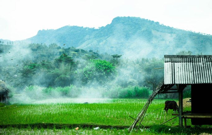 Capturing the uneasiness of a smoky Lombok farm before night.