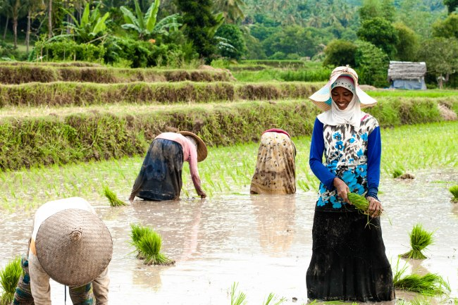 Journey through the farms with smiles from the locals.
