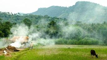 Walking through smoke on a farm in Lombok.