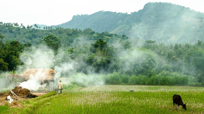 Walking through smoke on a farm in Lombok.