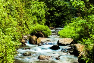 The running rivers of Gunung Rinjani - swimming in it may grant you youthfulness.
