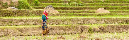 Taking a walk with the local farmers of Lombok.