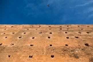 wall-2