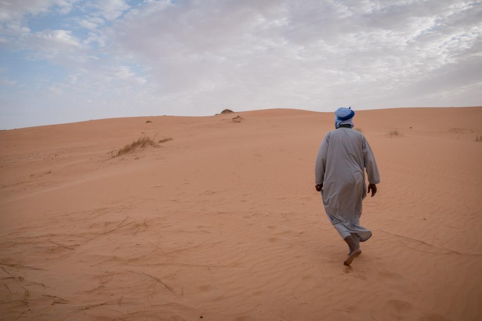 desertdwalk (1 of 1)