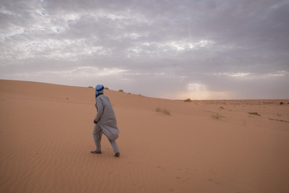 desertsunsetwalk (1 of 1)